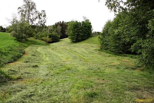 sächsische Landschaft