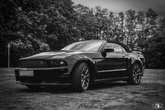 Ford Mustang GT CS | Bitche #1 B&W - Photo of Saint-Louis-lès-Bitche