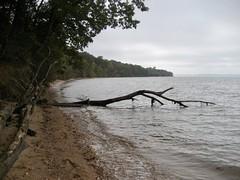 Potomac River Beach