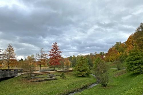 Autumn im Park