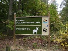Nanjemoy Wildlife Management Area