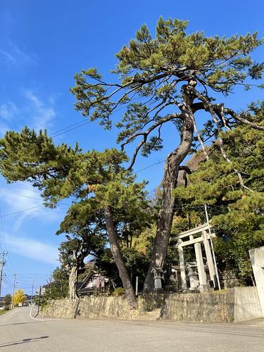 南志見住吉神社 (なじみすみよしじんじゃ)