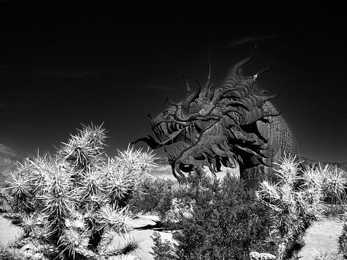 The Last Dragon - Anza Borrego Desert State Park, California