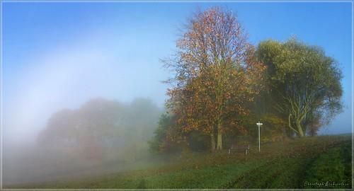 Blau-weißer Morgen