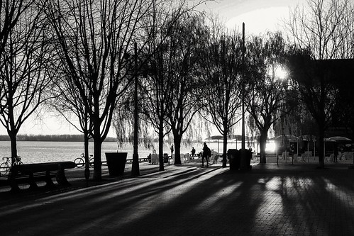 Long Shadows on the Promenade