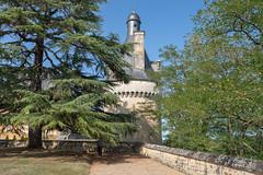 3321 Château de Touffou