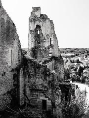 3423 Le château baronnial - Chauvigny