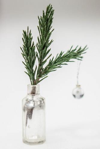 Pine branch for sale