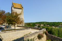 3425 Château d'Harcourt - Chauvigny