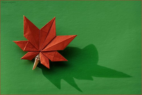 Origami Maple Leaf (Oh Kyu-Seok (Jassu))