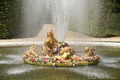 Château de Versailles : le bassin de Fiore