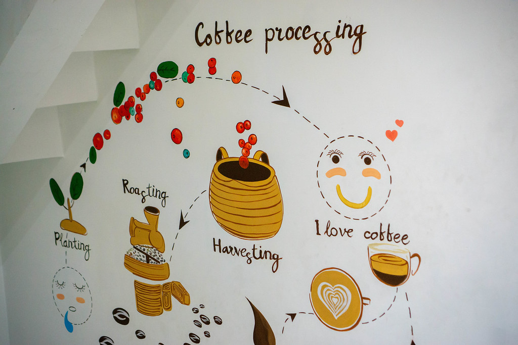 The Process of Coffee Making drawn on a White Wall in a Cafe