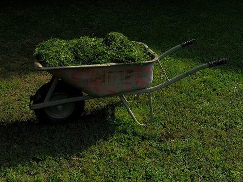 Garden work (2072)
