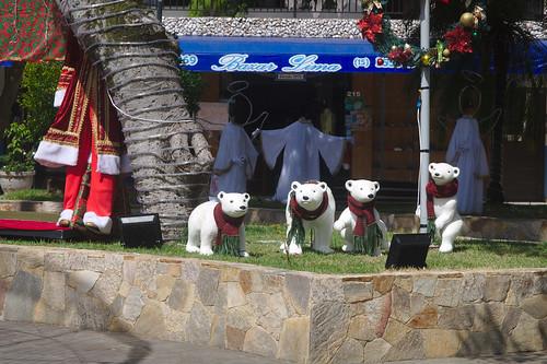 Ursos-polares de Navidad em Ribeira