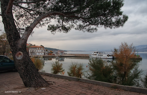 View to the port