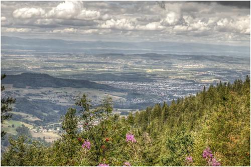 765-PANORAMA DESDE  SCHAUINSLAND  - FREIBURG  -ALEMANIA -