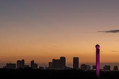 Fox 13 Skytower and Tampa Skyline