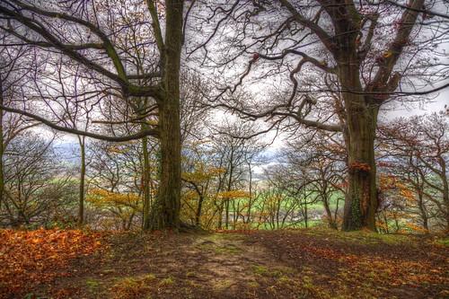 Autumn on the hills