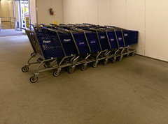 If one cart crashed into the wall, would the others blindly follow!?