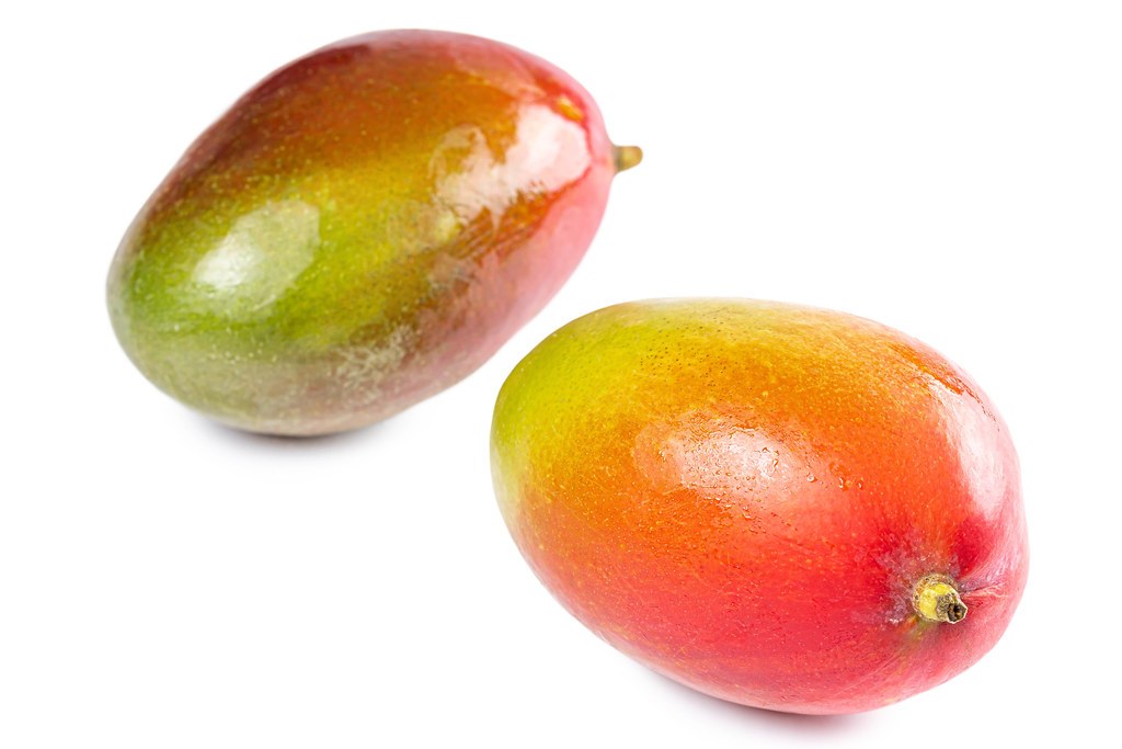 Two fresh whole mangoes on a white background