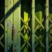 Green Gate in Light