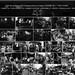 2009.01-2009.12[10] Shanghai Sanlintang Studio Pastel on paper 上海三林塘工作室 纸上炭精条-65