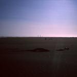 Dali Beach  (Rollei 35SE  /  Velvia 50)