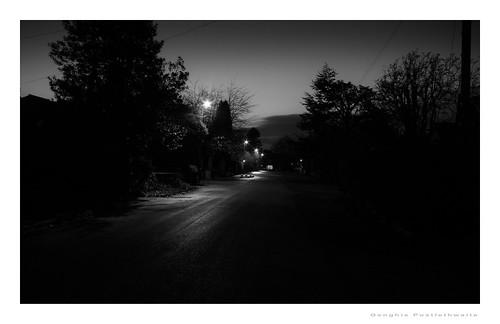 Down a dark lane