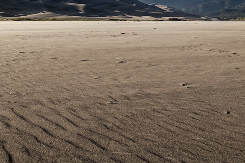 Particles of Sand, Granular and Loose (Great Sand Dunes National Park & Preserve)