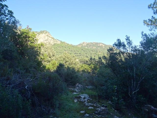 Photo:Corse2011170057 By Corse sauvage