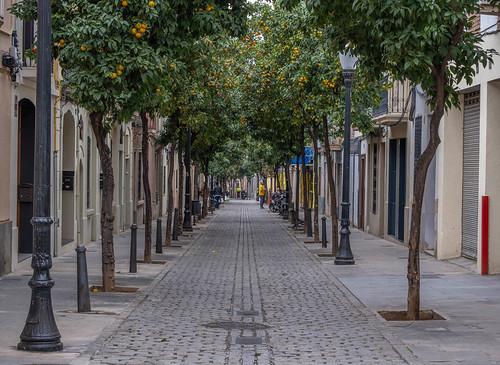 Carrer Pons i Gallarza al barri de Sant Andreu del Palomar Barcelona