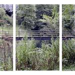 Bridge of quite waters by Paul Seymour