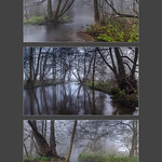 A morning, a river and mist by Iain Houston
