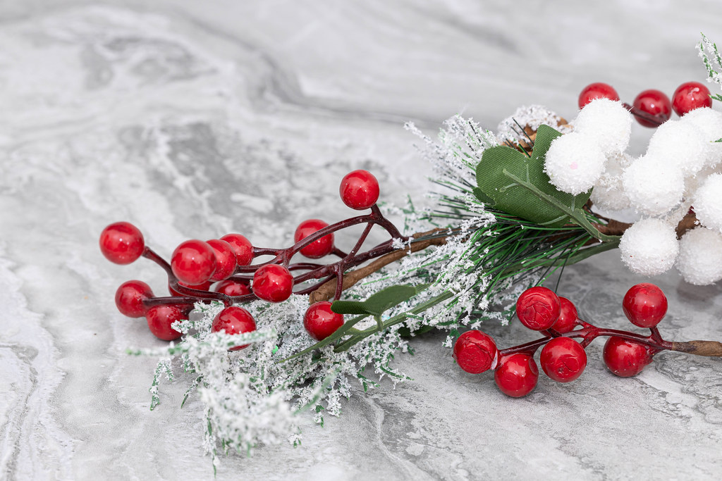 Frozen berryes and frozen fir branches Christmass decoration