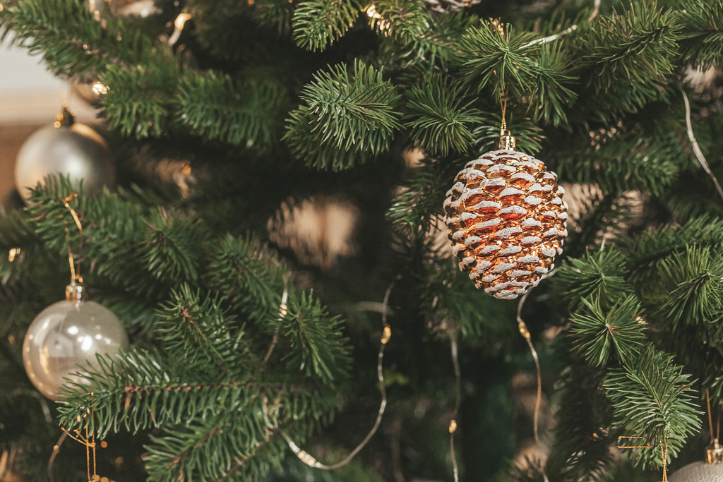 Decoration ball and cone hanging on a christmas tree branches