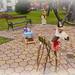 2020.11.28. Ünnepi előkészületek a Szabadság téren - Fotók:PURGEL ZOLTÁN©