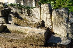 3468 Nécropole mérovingienne de Civaux - Photo of Gouex