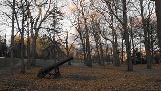 Canon, Parc du Bois-de-Coulonge, Québec, Canada  - 5803