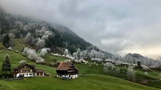 Bergwanderung - dem Hochnebel entfliehen