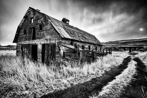 Relics of the Palouse XVIII [Infrared] [Explore 11/30/20]