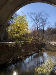 Rock Creek and fall color, view beneath Massachusetts Avenue Bridge, Washington, D.C.