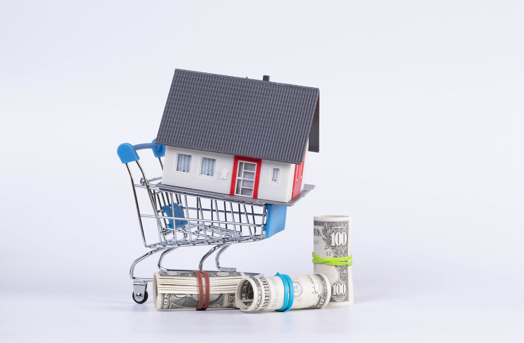 US dollar bills in rolls and miniature house with supermarket shopping cart