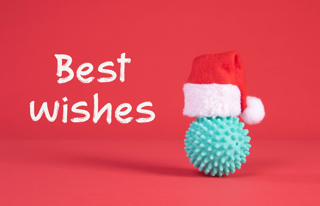 Blue bacteria with Santa Claus hat and Best Wishes text