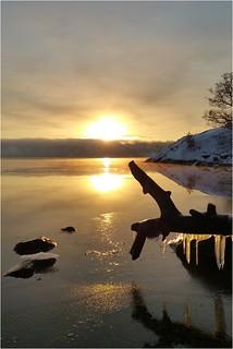 ❄️ Winter Morning Magic!