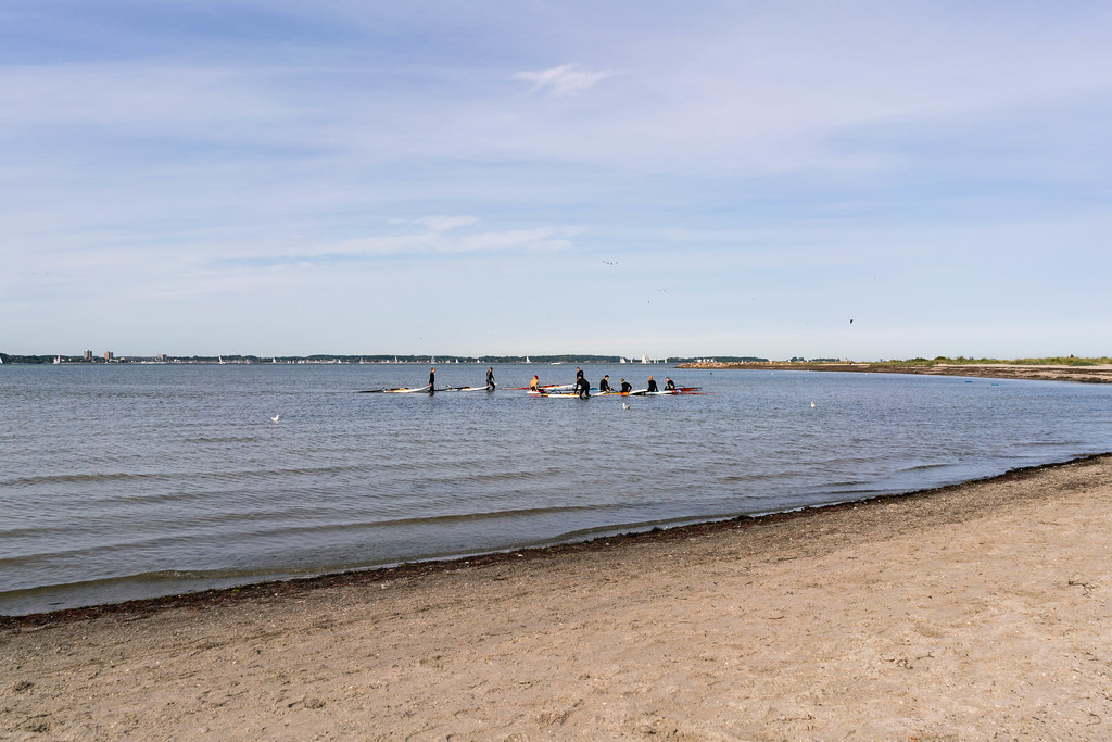 Group of SUP beginners having a masterclass near the shore