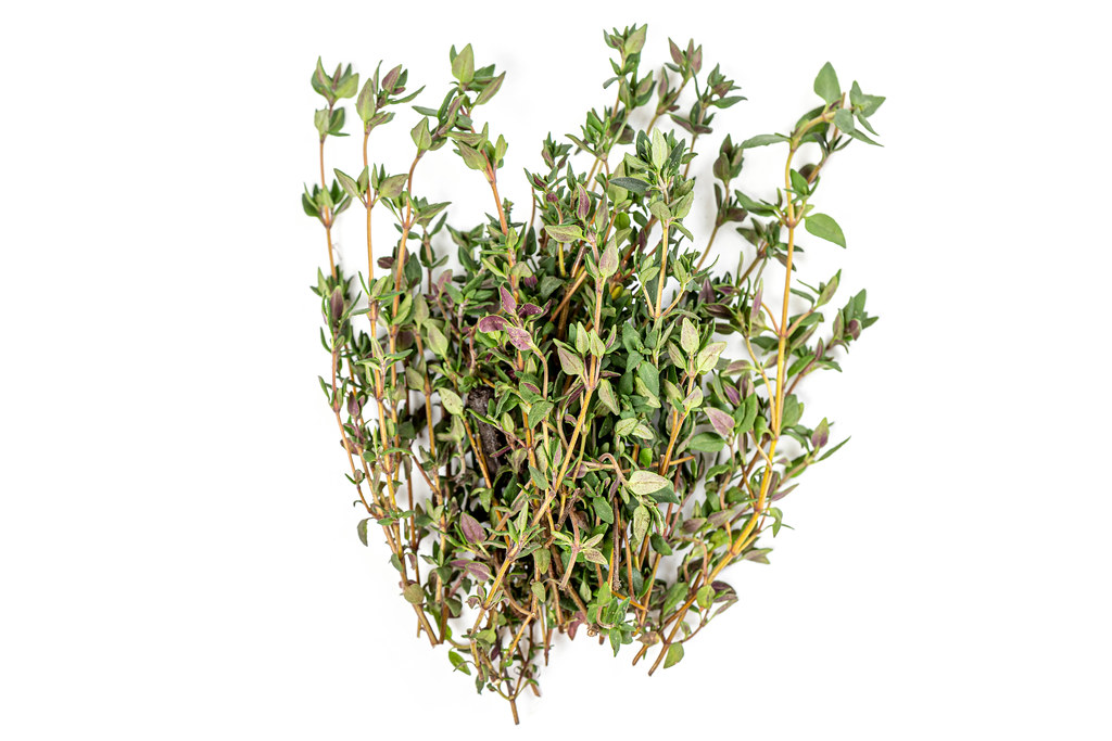 A bunch of fresh spiced thyme
