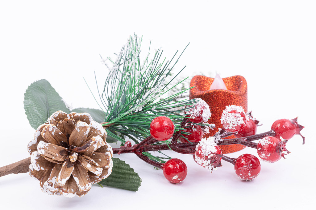 Christmas decoration with Fir Branches Cone and Snow