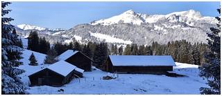 Aelpligatter (Obertoggenburg)