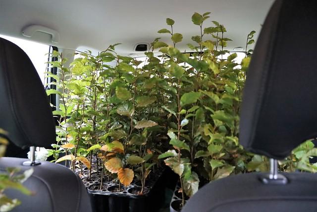 Využíváme veškerý prostor ve vozidle • Forestis Gallery