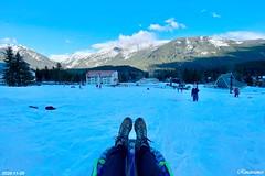 Snow Sledding at Snoqualmie Pass